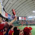 東京ドーム 巨人ー広島 大竹vs大瀬良 2015/5/13 ●1対0