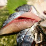 コリッコリっとして鯖のイメージ変わりました!博多 五島列島 鯖料理 きはる
