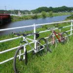 初夏の水田には白鷺と鴨がお出迎え 自転車日記 新川サイクリングコース