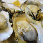 広島 大野瀬戸の牡蠣 レンジでチン(蒸しカキ)と牡蠣グラタン、追記:バターソテー、昆布蒸し