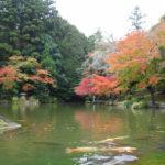 成田山へ紅葉狩り 2017成田山公園紅葉まつり(初日)に行ってきた 迷いましたが…
