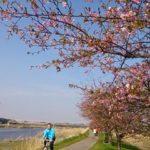 桜のつぼみ。自転車(LOUIS GARNEAU CASPER) 新川サイクリングコース