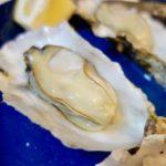カキ王国広島の中でも有数の産地「大野瀬戸」の牡蠣(カキ)を食べられる幸せ!